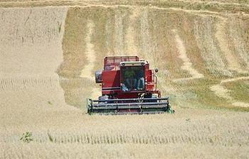 Foto de un tractor cosechando (Archivo)