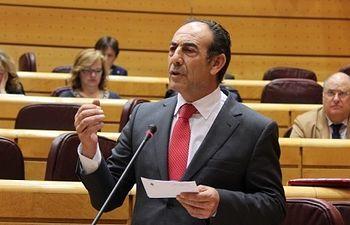 Pedro Sánchez Duque durante el Pleno en el Senado.