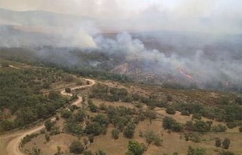 Foto: Ministerio de Agricultura, Alimentación y Medio Ambiente.