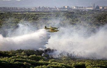 Incendio forestal en Granada. Foto: EFE.