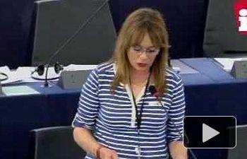 """Vallina: """"Palestina necesita a la UE para poner fin a violaciones de Israel del Dcho Internacional"""""""