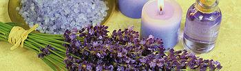 Imagen de la flor de Lavanda.