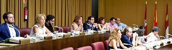 Foto Pleno Municipal.