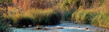 Uno de los Objetivos de Desarrollo del Milenio es reducir a la mitad, para el año 2015, el porcentaje de personas que carecen de acceso al agua potable respecto a 1990. Foto: Río Cabriel a su paso por la provincia de Albacete.