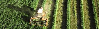 campo. Foto: Ministerio de Agricultura, Alimentación y Medio Ambiente
