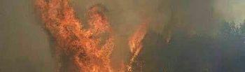 Incendio de Yeste.