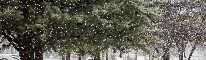 Nieve Albacete