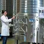 Laura Martínez, enóloga y responsable de la bodega y del viñedo, examinando unos depósitos de vino.