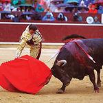 Enrique Ponce regresaba a Albacete tras dos años de ausencia, lamentablemente la lluvia impidió lucirse al valenciano.
