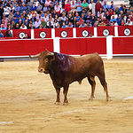 Rubén Pinar - Su segundo toro-9 - Feria Taurina Albacete - 14-09-16 - Para web