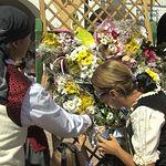 Instantánea de la Ofrenda de Flores a la Virgen de Los LLanos.