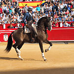 Diego Ventura - Su primer toro-1