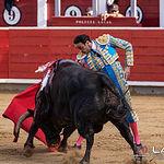 Feria taurina Albacete - Enrique Ponce - Su primer toro.
