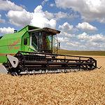 En Dehesa de Los Llanos, las 3.500 hectáreas de secano están limitadas a la producción de cereales y leguminosas.