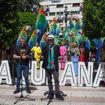 Presentación de la obra Adiós Arturo de La Cubana