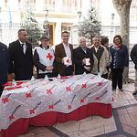 La Diputación colabora con el Día de la Banderita de Cruz Roja.