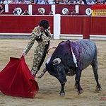 Fotos Feria Taurina - 16-09-18 - José Garrido  - Primer toro