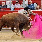 Fotos Feria Taurina - 15-09-18 - J.M. Manzanares - Fotos Luis Vizcaíno
