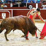 Miguel Ángel Perera fue otro de los perjudicados por la lluvia la tarde del día 17 de septiembre en Albacete.