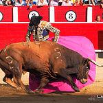 Juan del Álamo - Primer toro