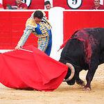 Enrique Ponce - Selección su segundo - 08-09-16 - Feria Taurina Albacete