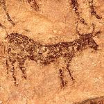 Pintura de un toro en el Abrigo Grande de Minateda.