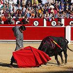 Miguel Ángel Perera - Festival del Cotolengo - 13-05-18