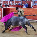 Fotos Feria Taurina - 16-09-18 - Andrés Palacios - Primer toro