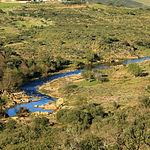 Los ríos junto con los diversos arroyos y lagunas estacionales marcan la hidrología del Parque Nacional de Cabañeros y se encuentran condicionados por las condiciones climáticas.