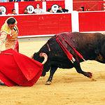David Mora - Su primer toro-2 - Feria Taurina1 Albacete 14-09-16 - Para web1
