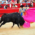 Rubén Pinar - Su primer toro-2 - Feria Taurina Albacete - 14-09-16 - Para web