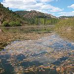 La Laguna del Marquesado, en la provincia de Cuenca, está catalogada como Reserva de la Biosfera.