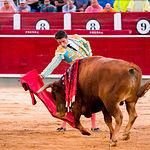 Alfonso Cadaval - Su segundo toro - Feria de Albacete del 13-09-2016-2