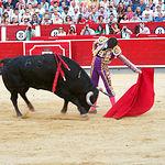 José Garrido - Primer toro - 10-09-16.