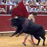 Sebastián Castella en un lance en su primer toro.