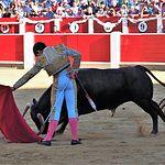 Mario Sotos - Primer toro - Novillada 11-09-17