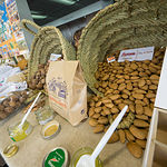 Inaugurada en Albacete la I Feria Ibérica de Agricultura Biodinámica que se celebra en España