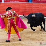 Antonio Ferrera - Su primer toro corrida Feria Taurina de Albacete - 14-09-17.