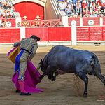 Fotos Feria Taurina - 16-09-18 - Rubén Pinar - Primer toro