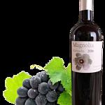 Vinos Magnolia Garnacha barrica 2016