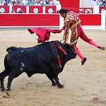 Antonio Ferrera - Cogida segundo toro