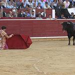 José Garrido - Corrida 17-09-15 - Feria Albacete 2015