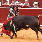 Manuel Amador está mejorando mucho a la hora de entrar a matar. Foto: La Mancha Press.