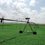El regadío produce cosechas más abundantes o más cosechas a largo plazo, lo que aumenta la rentabilidad.