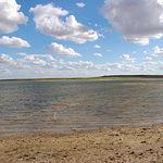 Laguna del Salicor, en la provincia de Ciudad Real. Uno de los 28 humedales protegidos y Reserva de la Biosfera.
