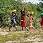 Según la ONU, el 30% de la población mundial no cuenta con los recursos e infraestructuras suficientes para asegurar el abastecimiento de agua potable a todos sus habitantes.