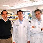 De izquierda a derecha, Jorge Laborda, decano de la Facultad de Medicina, Enrique Poblet, director de la nueva Unidad de Investigación Oncológica, y el coordinador clínico Alberto Ocaña.