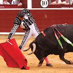 Manuel Amador, bajándole la muleta a uno de los toros lidiados en la Feria de Albacete 2004. Foto: La Mancha Press.
