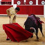 Fotos Feria Taurina - 14-09-18 - Paco Ureña - Primer toro