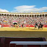 Plaza de Toros de Albacete - Corrida del 16-09-15